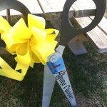 Algoma Area Chamber of Commerce Member Ribbon Cutting Ceremony