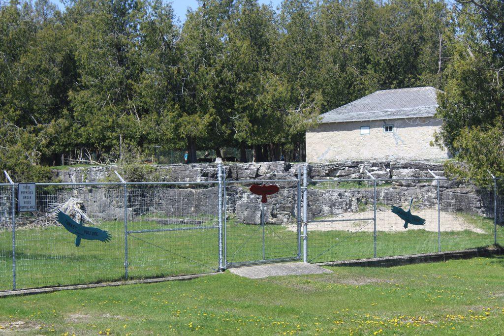 Bruemmer Park Zoo