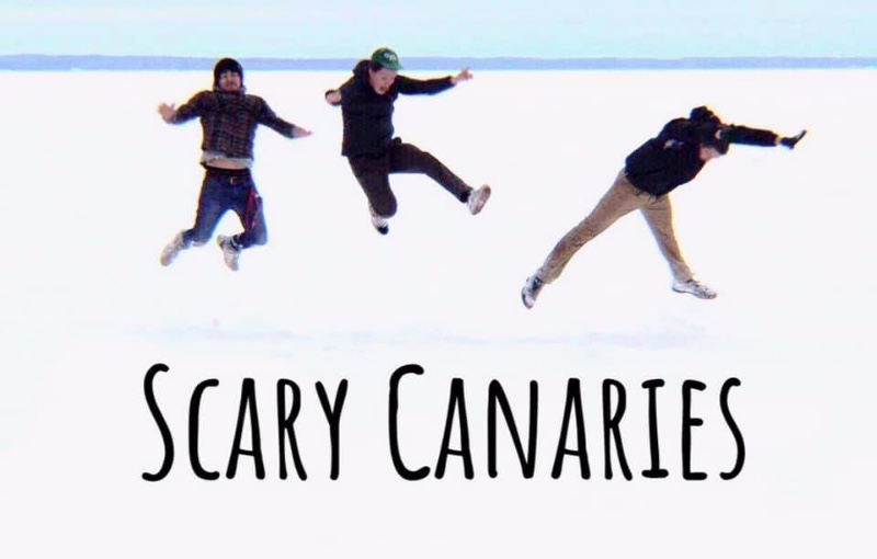 scary-canaries