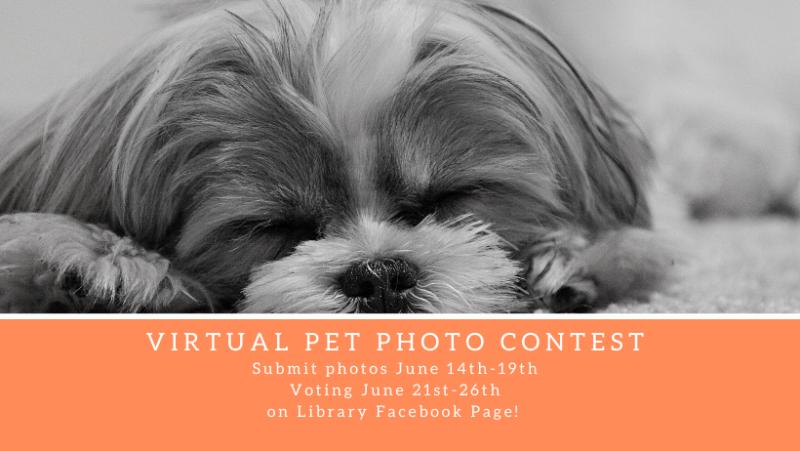 Virtual-Pet-Photo-Contestfbbanner